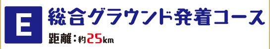 E総合グランド発着コース
